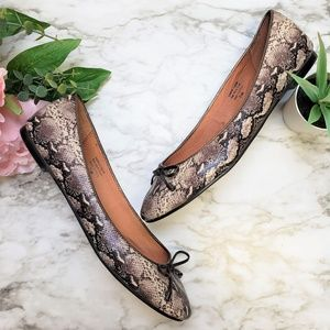 Halogen Snake Print Shoestring Ballet Flats